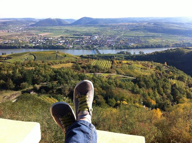 Herbst an der Donau in Niederösterreich mit Wein & Genuss!