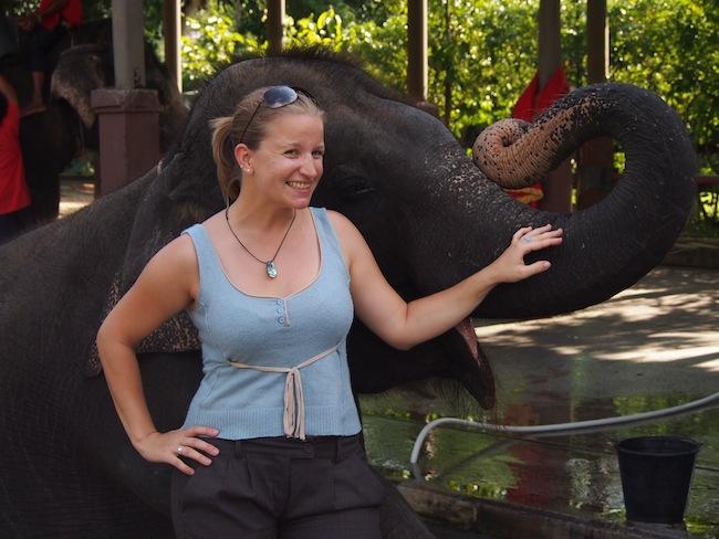 Elefanten in ihrer natürlichen Umgebung sind schon etwas Besonderes ...