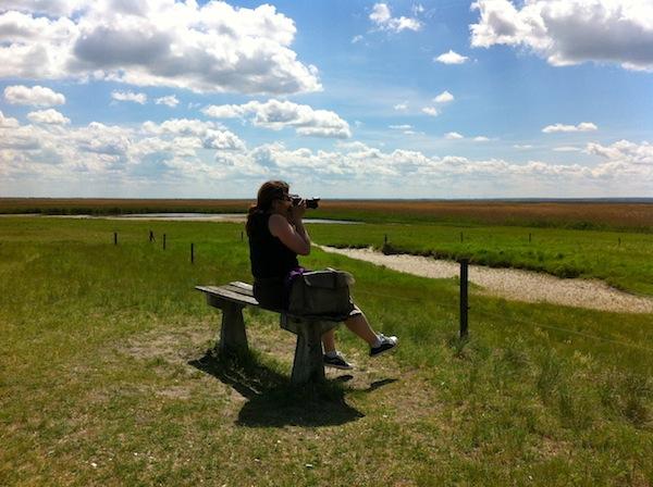 Reiseblogger sind in der Lage, genau das zu erfassen, was ihre Leser wollen: Persönliche, intime und dennoch gut recherchierte Reiseberichte über ein Reiseziel oder eine Form des Reisens, wie z.B. kreatives Reisen. Hier lässt die Videobloggerin Emmy Horstkamp die Magie des Neusiedler Sees in Österreich auf sich wirken.