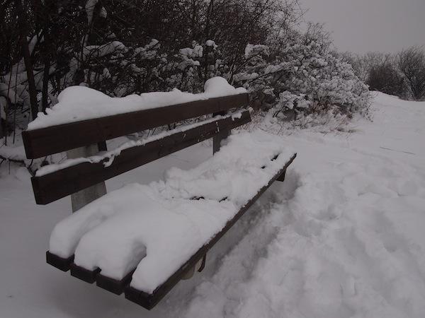 ... wenngleich auf dieser Bank schon eher der Schnee Platz genommen hat ...