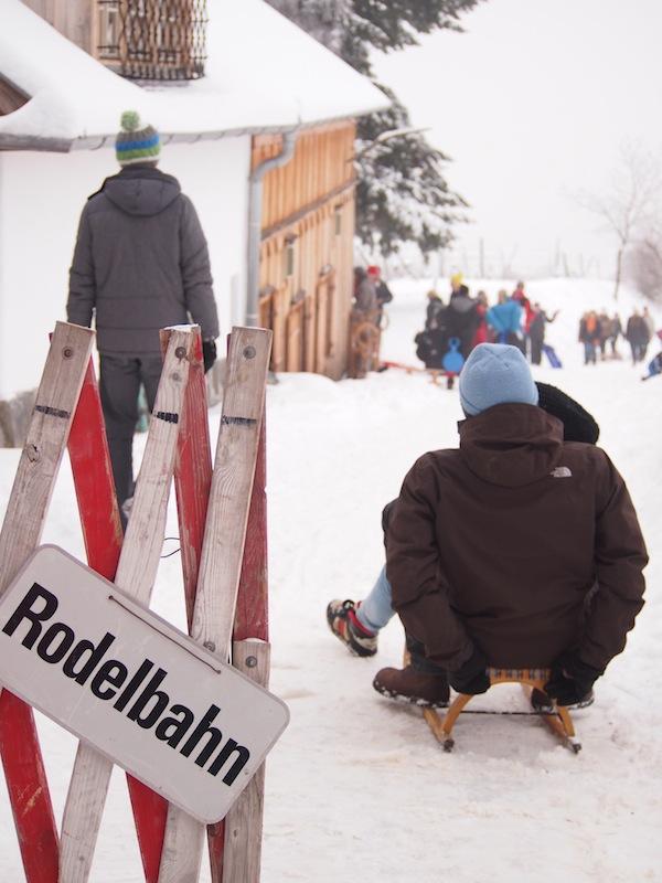 """... bis die Fährte uns unweigerlich """"zurückführt"""": Zum Winterspaß unter Seinesgleichen beispielsweise. (R)auf die Rodelbahn!!"""