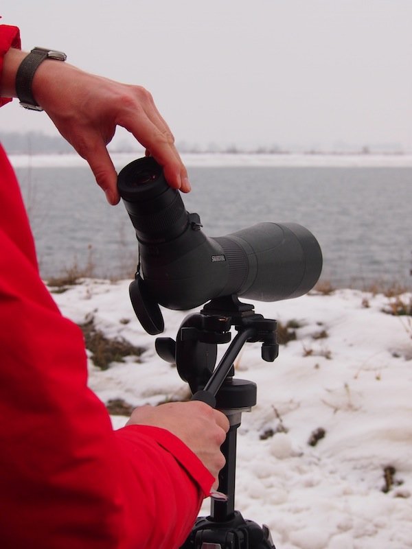 Da vertrauen wir doch lieber auf die kundige Führung unseres Birdwatching-Experten Manuel, der direkt ab dem Thermenhotel Führungen samt Abholung & Transport anbietet. Ein wahres Eintauchen in die atemberaubende Natur vor Ort - auch und gerade mitten im Winter.
