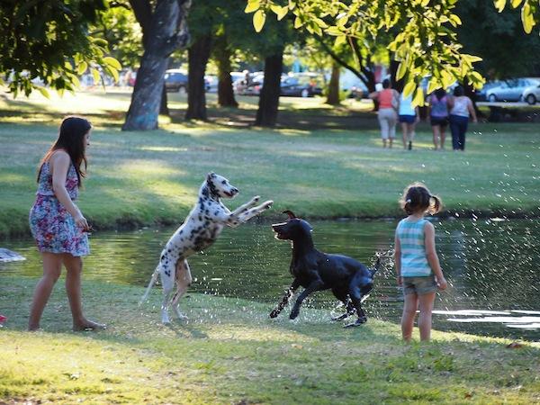 """Hier im Park sehen wir Familien, Kindern & Hunden beim Spielen zu. Ein sehr alltägliches Stadtbild, das sich weltweit wiederholt und irgendwie Ruhe bedeutet - """"some things will never change""""."""