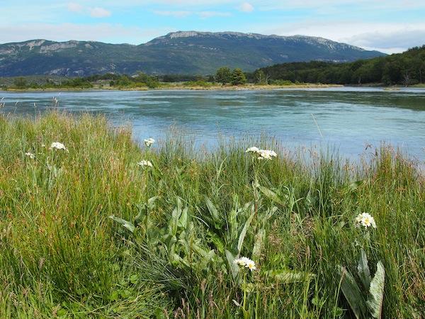 Schön ist es hier: Mit etwas Glück erlebt man tatsächlich zahlreiche dieser windstillen, sonnigen Momente in Tierra del Fuego.