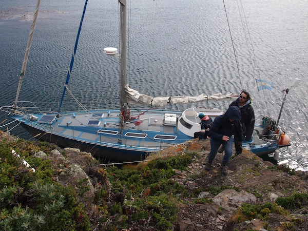 Sailing company Tres Marias takes us out on Canal Beagle, off the city of Ushuaia, for amazing birdwatching & hiking opportunities on a nearby island of the sea canal.