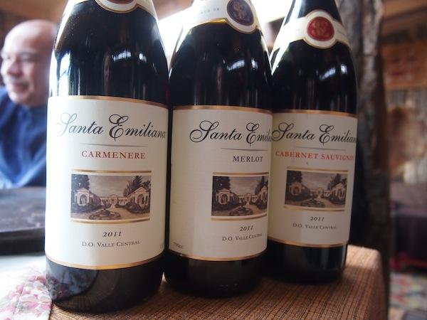 Dazu kommt der ausgezeichnete chilenische Wein, den wir hier goutieren ...