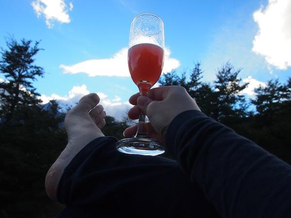 Ein Hoch auf unsere Reise: Mit Erdbeer-Pisco Sour genießt es sich einfach besser ;)