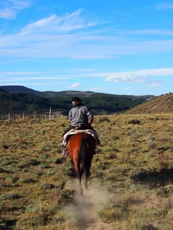 ... bevor es wieder heimwärts geht: Sechs lange Stunden auf dem Pferd durch eine für mich märchenhafte Landschaft haben es in sich – wunderschön!