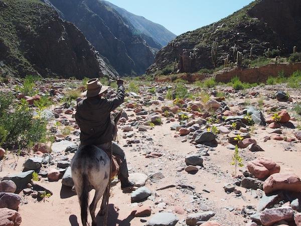 Auf geht's: Hoch zu Ross erkunde ich mit meinem persönlichen Gaucho Hector das Flusstal von Ocumazo.