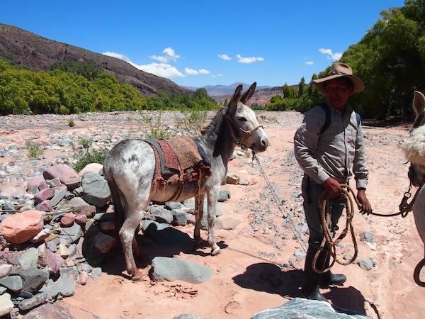 Hector selbst reitet auf diesem Esel, einem eher störrischen Vieh - recht lustig das Ganze ;)