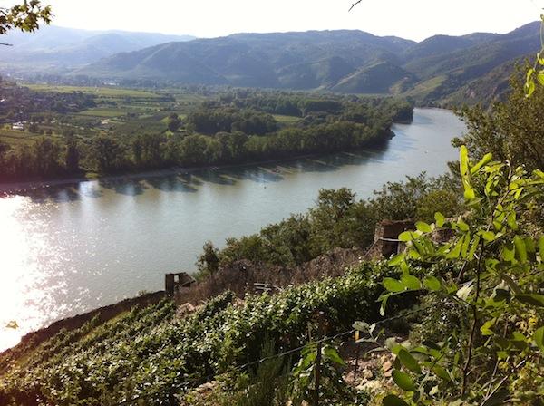 Die Donau in Niederösterreich ist vor allem während der Sommermonate eine stark frequentierte Tourismusregion; schon zu Ostern setzt generell der Besucherstrom dank Radtourismus, Weinveranstaltungen & Ostertraditionen ein.