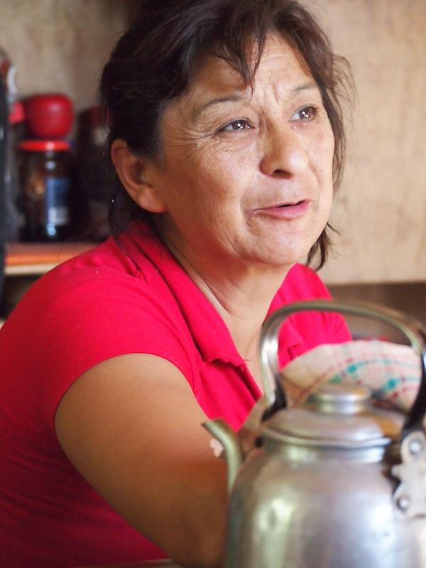 Auch oder gerade die Menschen in den oft entlegenen Landgebieten der weiten argentinischen Steppe haben großes Interesse an den neuen Medien zur Unterstützung ihrer beginnenden Arbeit mit (internationalen) Touristen.