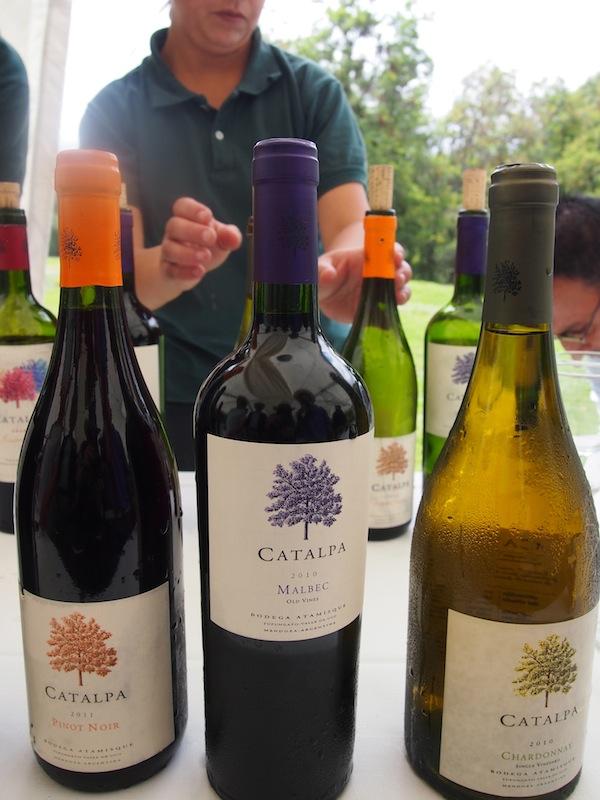 Im Rahmen unserer Einladung verkosten wir die verschiedenen, typischen Linien des Weinguts, von Reserve bis hin zu jungen, fruchtigen Weißweinen.