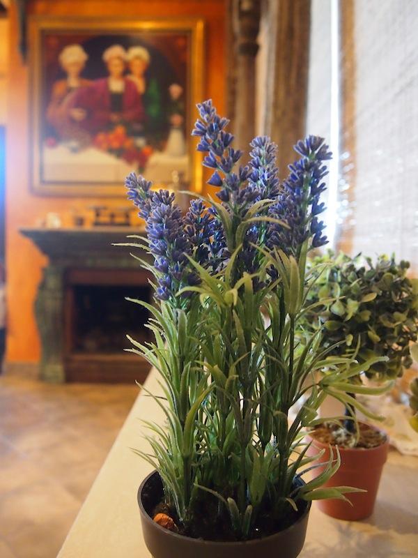 Das Haus der Familie hält einige spannende, historische Details bereit und ist schon aus geschichtlicher Sicht einen Besuch wert.