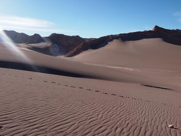 Auch die Wüste beeindruckt durch ihre unsägliche Schönheit ..