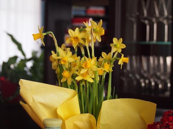 Rechtzeitig zum Frühjahrsbeginn grüßen hier bereits die ersten Märzbecher. Schön :)