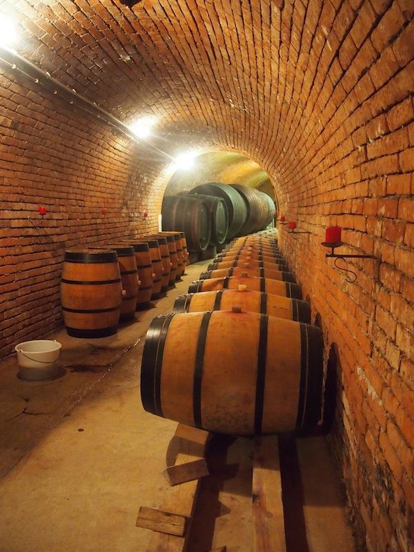 In den Barrique-Fässern reifen Rot- und Weißweine, derer wir im Anschluss zahlreiche verkosten werden. !