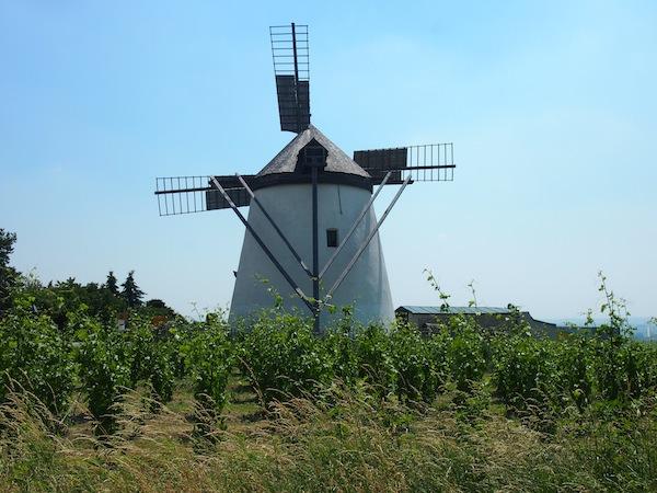 Die Retzer Windmühle als Zeichen vergangener Mahlkultur & heutiger Weingarten-Nostalgie!