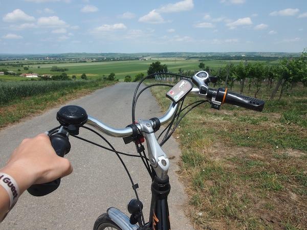 Die Kalorien am nächsten Tag wird am besten Fall durch eine schwungvolle Fahrt mit den E-Bikes des Schlosshotel Mailberg wieder los!