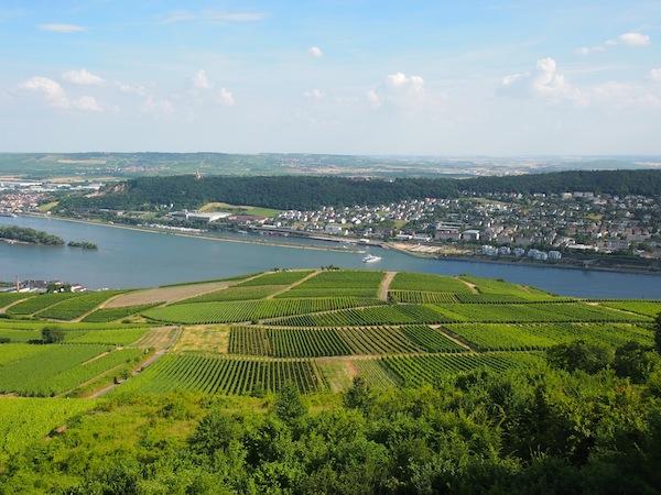 Ankunft in der Stadt Rüdesheim & Besuch des berühmten Niederwalddenkmals: Von hier aus hat man einfach einen fantastischen Blick auf die gegenüberliegende Stadt Bingen (ja, die von Hildegard!). Wir nehmen erst mal dieses Gefährt ...