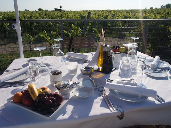 On the second night of our stay at the LOISIUM hotel, we opt for this amazing picnic in the vineyards – and are simply overwhelmed by the beauty of the moment.