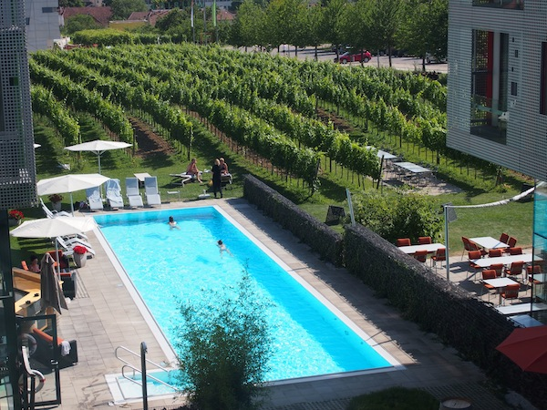 Blick auf Pool & Weingärten des Wine & Spa Resort LOISIUM Hotel Langenlois.: To dream for.