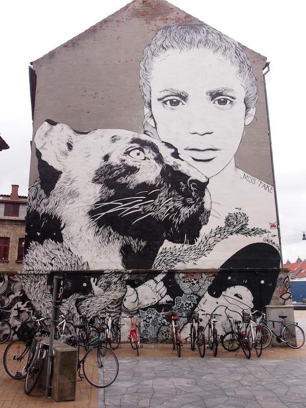 Nebst historischen Erzählungen finden wir hier auch großartige Street Art Graffiti Werke mitten in der Altstadt von Odense.