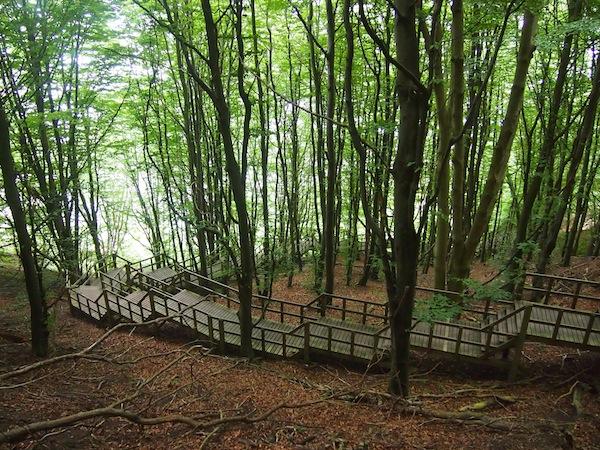 Vorbei an einem steilen Waldstück, steigt man direkt hinab an die Küste und ans Meer.