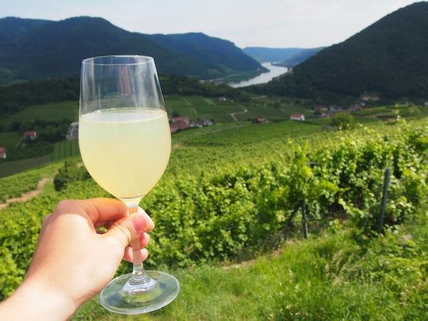Prost Ihr Lieben! Ein Hoch auf die Donau in Niederösterreich sowie die Wachau als einzigartige Kulturlandschaft & Weinheimat.