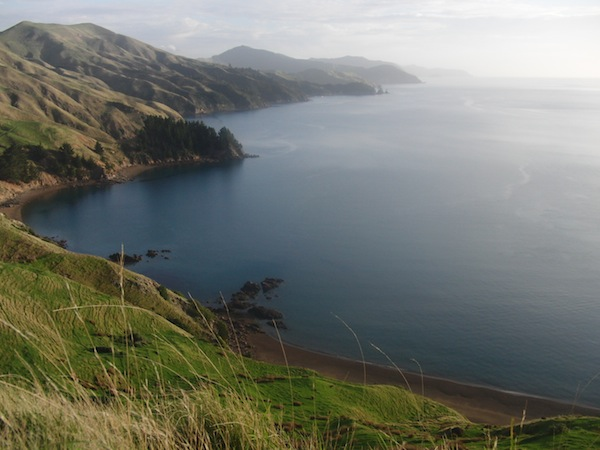 The icing on the cake ... Standing in front of a landscape like this, looking out over the Marlborough Sounds near French Pass Sea Safaris.