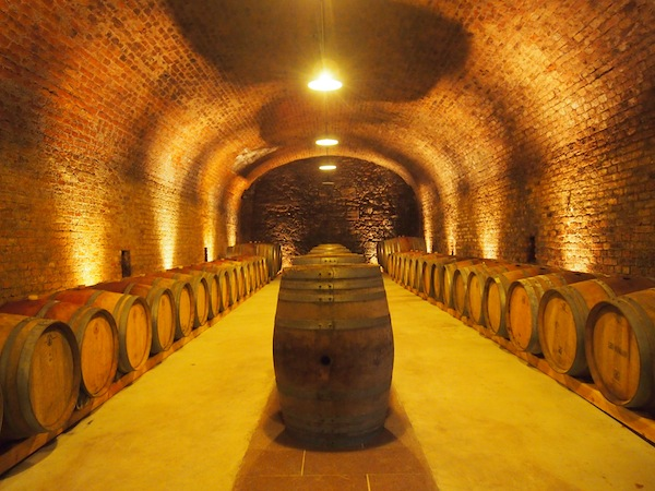 We check out the wine cellars during a guided tour …