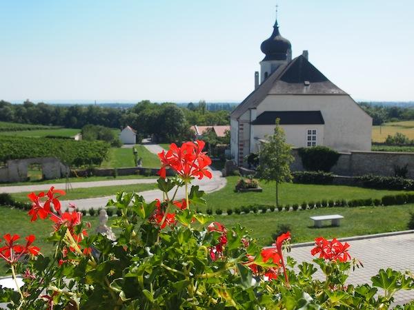 Das Anwesen des Freigut Thallern erstrahlt im Licht der spätsommerlichen Mittagssonne. Willkommen in der niederösterreichischen Toskana!