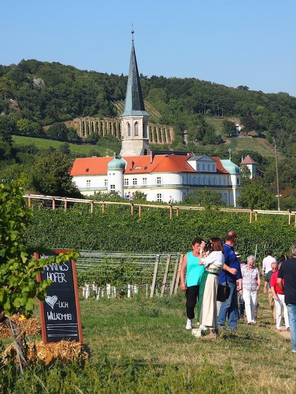 Besucher von nah & fern genießen Stimmung und Ambiente am Weinwanderweg der Genussmeile, hier vor dem Weinort Gumpoldskirchen.