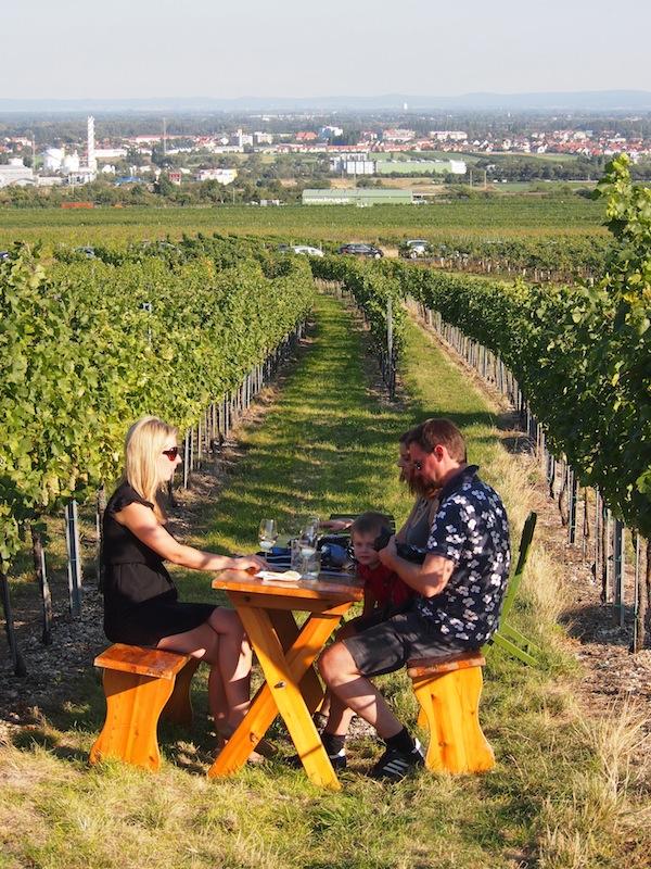 Wo sonst kann man wirklich mitten im Weingarten mit Blick auf die Stadt Wien und dennoch stilvoll im Grünen sitzen ...?
