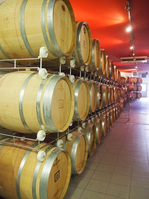 Das Weingut Gager besticht durch den Einsatz modernster Technologie und schonender Traubenverarbeitung, deren Eleganz wir im Glas spüren ...