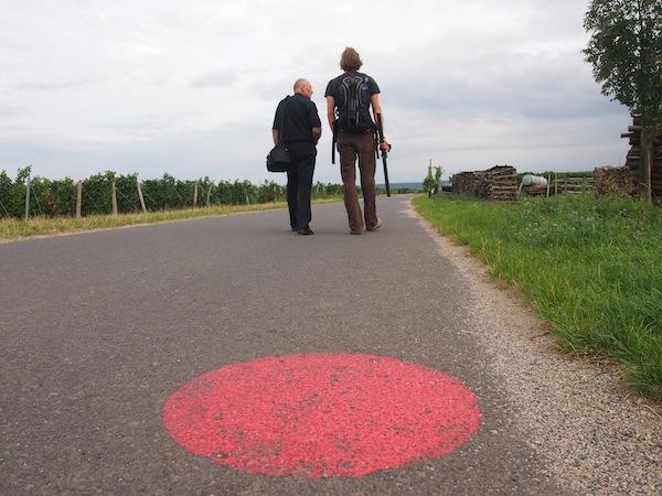 Schließlich ist der nächste Spaziergang nicht weit: Unterwegs auf dem rund 2km langen, 1. Burgenländischen Rotweinlehrpfad lernen wir von Anna Zell von der Vinothek Horitschon viel über den Weinbau in der Gemeinde.