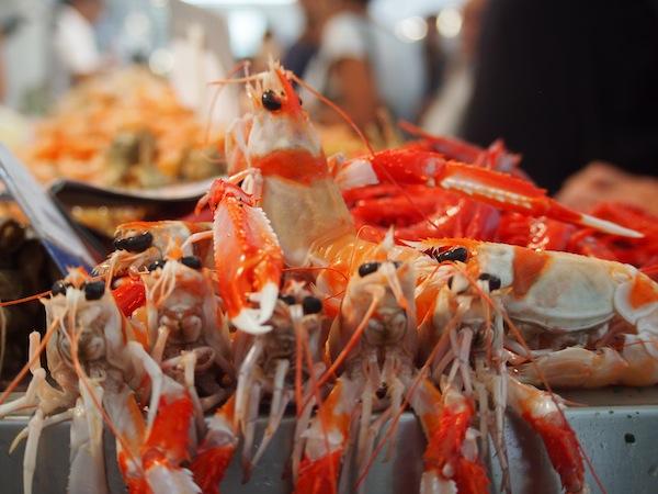 Wir kaufen gleich mal für die nächsten Tage ein: Hier in Cadiz genießt man am besten jeden Tag (fang)frischen Fisch aus dem Meer!