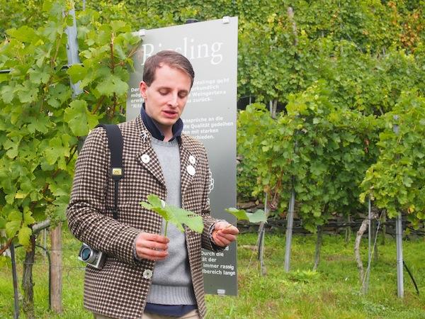"""Alexander Pfeffel mit einem Weinblatt """"Riesling"""" in den hauseigenen Weingärten des Gartenhotel & Weingut Pfeffel."""