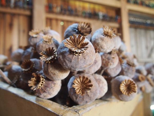 Aus diesen Mohnkapseln rieselt nach der Ernte der feine Waldviertler Grau-, Blau- oder Weißmohn - je nach Sorte werden diese für unterschiedliche Zwecke verwendet und beispielsweise gemahlen abgepackt verkauft.
