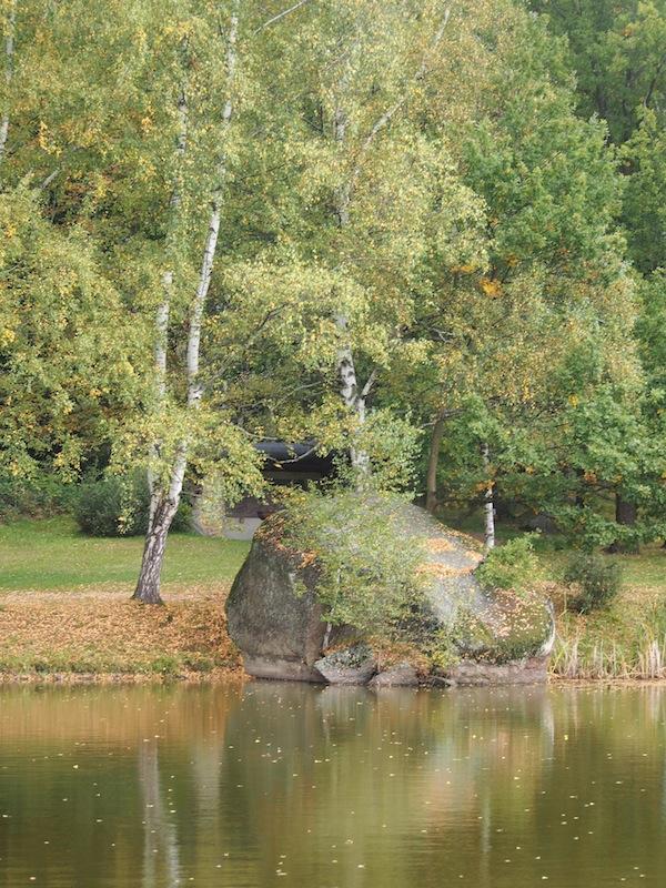 Kraftvolle Aussichten: Die Wanderregion Oberes Waldviertel lädt ein zu bezaubernden Aussichtspunkten wie diesen.