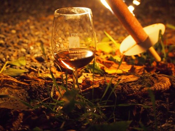 WeinErlebnisFührung der anderen Art: Im Schimmer unserer Fackeln an verschiedenen Stationen entlang der Weinberge Wein zu verkosten, ist schon ein besonderes Sinnes-Erlebnis.