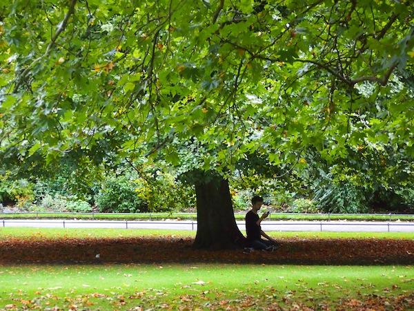 Entspannung pur: Saftiges Grün im Stadtpark St. Stephen's Green ... Dublin ist immer eine Reise wert.