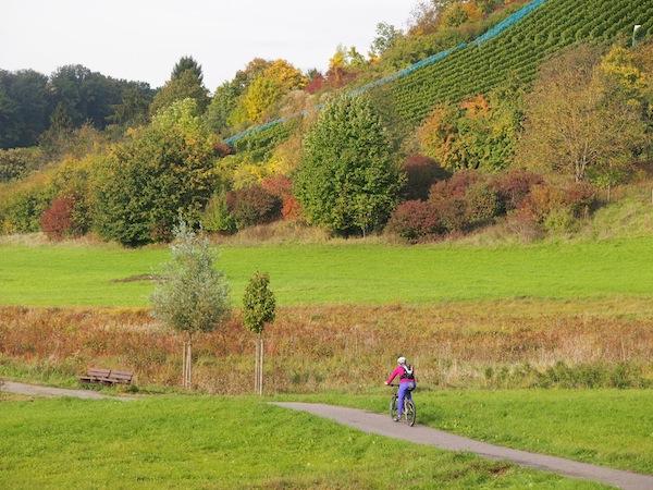 E-Biken südlich von Heilbronn ... Landschafts- & Naturgenuss pur.