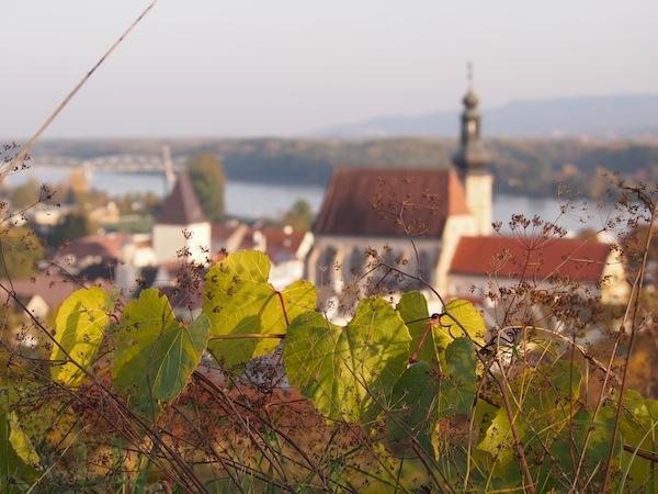 Lieblingsbild Nr. 6: Beim Blick über die Weinberge wird die Sicht auf die Stadt Krems an der Donau erst richtig schön.