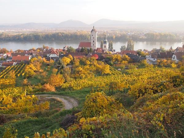 Lieblingsbild Nr. 1: Die malerische Herbstlandschaft meiner Heimatstadt Krems an der Donau. Mir fallen keine poetischeren Worte ein, als dieses Bild bereits ausdrückt. Einfach wunderschön ..