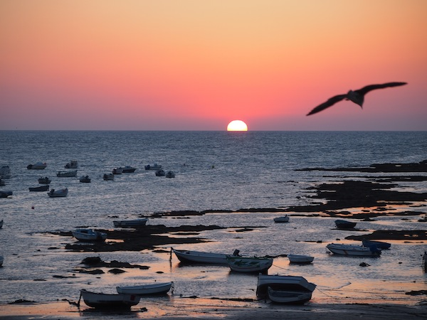 Gute Tipps der Einheimischen lohnen sich: Die beste Uhrzeit kennen, um den Sonnenuntergang vom Torre Tavira in der spanischen Stadt Cádiz zu beobachten - unbezahlbar.