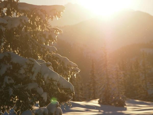 Später, im Licht der späten Nachmittagssonne, bekommt alles nochmal seinen ganz besonderen Reiz ...