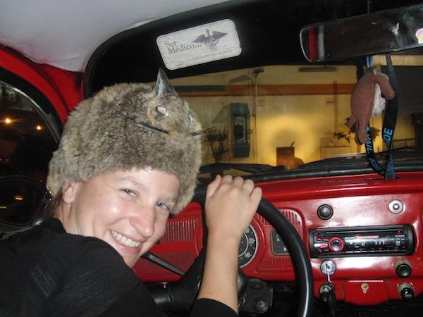 """Ok. Wo & WIE dieses Foto von mir in einem alten VW Käfer mit einem Chinchilla-Andenhasen auf dem Kopf mitten im nächtlichen Lima, Peru, entstanden ist, ist Stoff für einen weiteren Artikel hier auf meinem Reiseblog. Fürs erste sei gesagt: Treiben lassen, das berühmte """"Go With The Flow"""", haben mich zu diesem ungeheuren Reiseabenteuer gebracht. !!"""