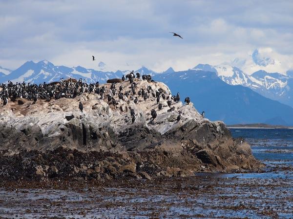 Und noch eine Szene wie aus dem National Geographic Channel … Segelturn im Beagle Kanal des Südpazifikmeeres nahe der Stadt Ushuaia.