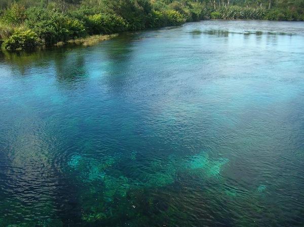 Pupu Springs: Direkt aus der Erde sprudelt hier eines der reinsten Trinkwasservorkommen des Landes. Zu finden: Ganz in der Nähe der Stadt Takaka, auf dem Weg nach Golden Bay, Südinsel.
